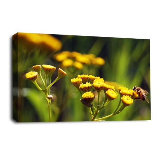Floral Flower Wall Art Abstract Grey White Yellow Picture Print
